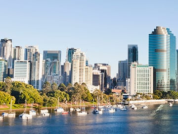 Brisbane City Botanic Gardens Skyline